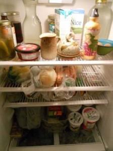 fridgeshrunk